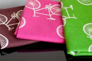 Echino Nico Cycling